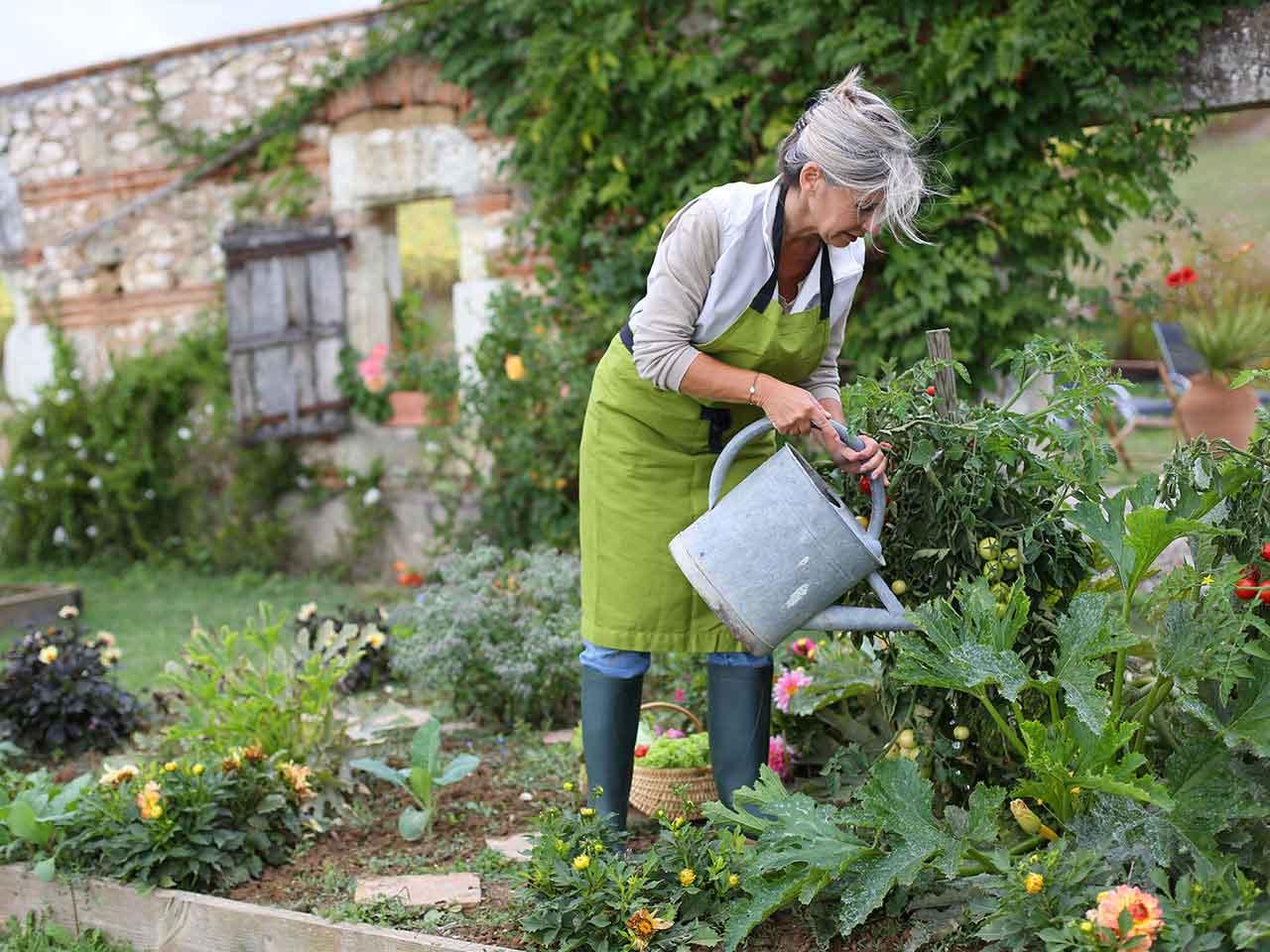 Поддържане на Съществуваща градина